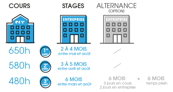 stage-alternance-bachelor-ecv-digital