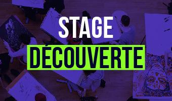 stage découverte ecv