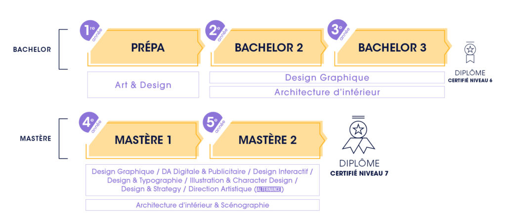 schéma cursus ecv design